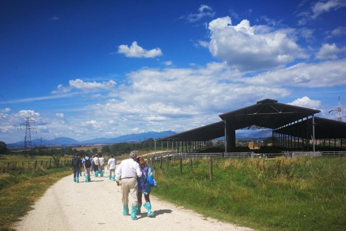 Regiones de Cundinamarca y Lazio efectúan su primer encuentro en la cooperación