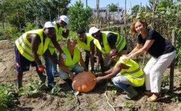 O diálogo entre as cidades Velletri-Roma e Barranquilla resulta em um plano de cooperação para a agricultura urbana